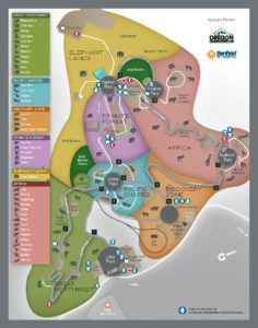 oregon-zoo-map-winter-2017-ENG-236x300